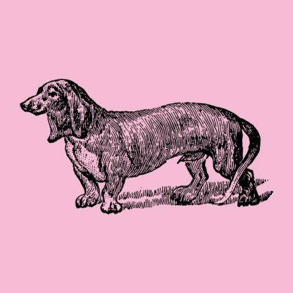 Dog hand drawing - black heat transfer on a pink background