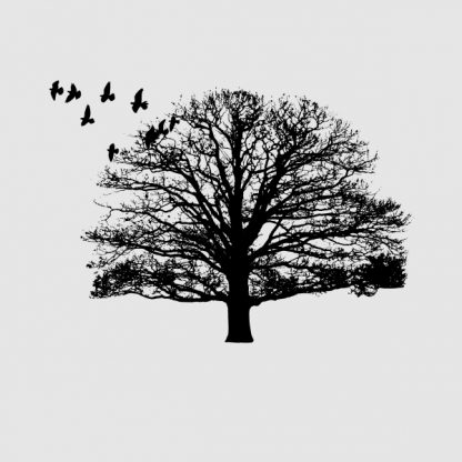 Nature. Tree and birds - Black heat transfer on a grey background
