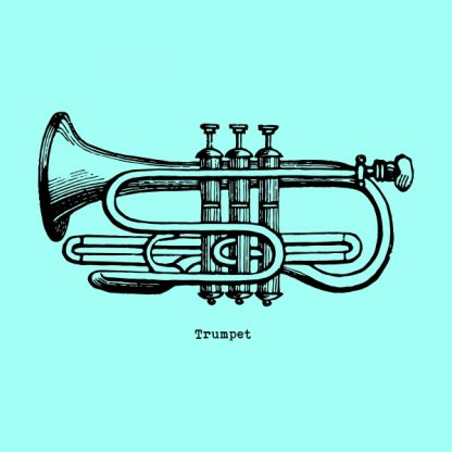 Trumpet - black heat transfer on a mint background
