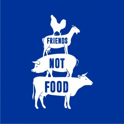 friends not food heat transfer on a royal tshirt